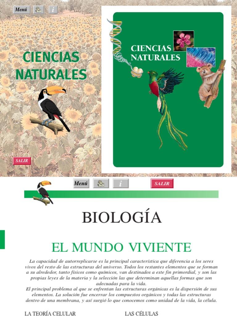 Mixines reproduccion asexual de las plantas