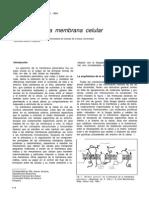 Biología de La Membrana Celular
