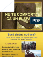 Elefant Ul