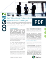 SAP Divestiture Projects