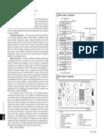 Pr440 Schemi Di Processo