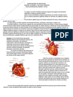 15. Generalidades de Angiologia