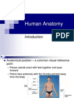 Intro to Anatomy Powerpoint 1227698705751772 8