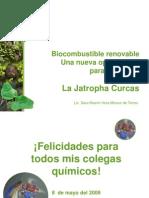 Presentacion Jatropha 2