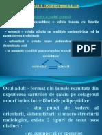 1 Semiologia Aparatului Osteoarticular