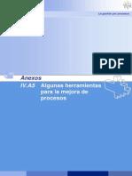 IVA5 emjoramiento de Procesos.pdf