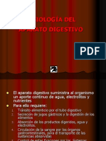 Clase Aparato Digestivo 27.12.2007