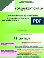 Curs 5 Cultura Organizationala