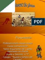 gallinazos-sin-pluma-1207114739119598-5
