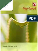 YG Company Brochure 2014