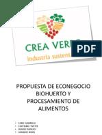 Econegocio Crea Verde