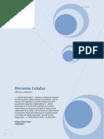 Divisic3b3n Celular Paloma Flores Casas