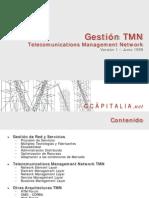 1999-gestion-tmn-v1