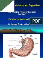 14ta. Fisilogia Del S. Digestivo.