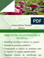 Aula de Revisão Sistemática Vegetal