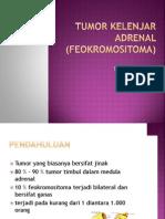 endokrin feokromositoma