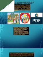 Responsabilidad de La Enferemera Medicamentos y Sonda Rectal
