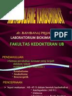 2. Metabolisme Karbohidrat