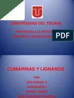 Cumarinasylignanos 130624231236 Phpapp02 (1)