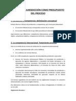 Tema 13. La Jurisdicción Como Presupuesto Del Proceso