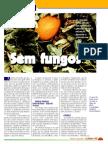 hf12_melaosemfungos