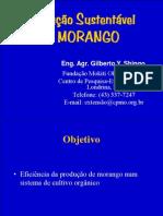 Palestra Gilberto Shingo
