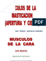 Musculos de La Masticacion 2 Examen