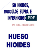 1. Hueso Hioides, Mus. Supra e Infrahioideos[1] 2 Examen