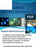 Marine Biotech