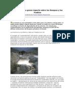 La Minería y Su Grave Impacto Sobre Los Bosques y Los Pueblos