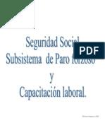 Sistema Paro Forzoso y Capacitación Laboral