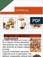Ciupercile
