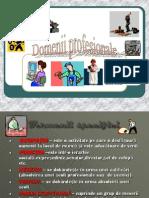 Domenii Profesionale