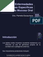 Enfermedades Infecciosas Específicas de La Mucosa Oral (4)