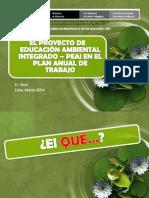 Enfoque Integrador Del PEAI 20.03.2014