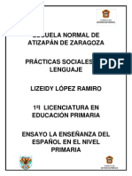 Ensayo La Enseñanza de La Lengua en Primaria