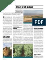 Arequipa y El Boom de La Quinua
