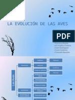 La Evolución de Las Aves