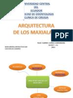 Arquitectura Maxilares Larrea