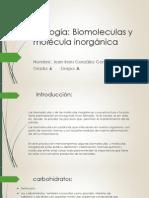 biologia trabajo.pptx