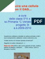Cellula Con Das