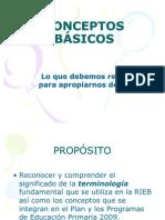 57411721-CONCEPTOS-BASICOS