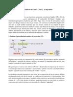 Conversion de Gas Natural a Liquidos