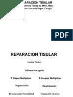 17. reparacion tisular