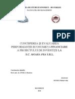 Conceperea Și Evaluarea Performanței Economico-financiare a Proiectului de Investiții s.c. Moara Pra s.r.l.