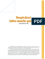 Despicaturi Labio Maxilo Palatine