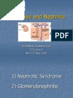 Nephritis Nephrosis