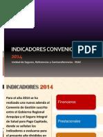 Indicadores Convenio Capita 2014 FINAL