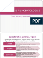 Sindroame-Psihopatologice-1