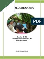 ESCUELA DE CAMPO - N° 06
